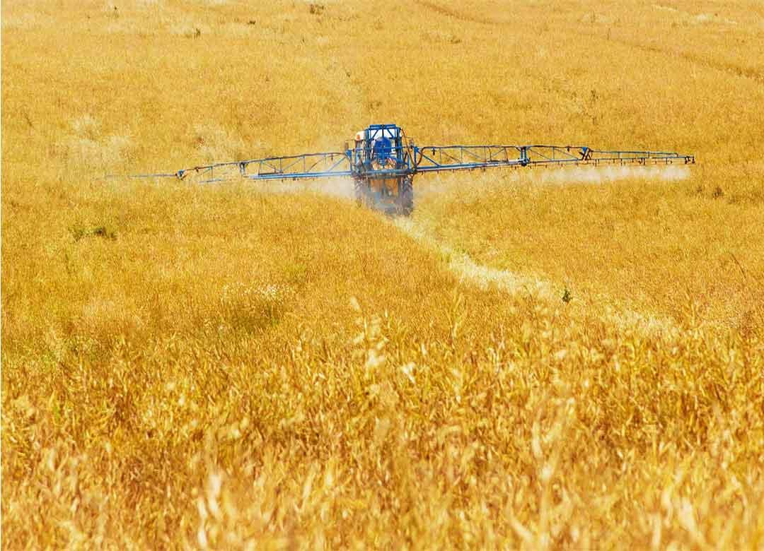 Pestisida, Fungsi dan Bahaya Penggunaannya