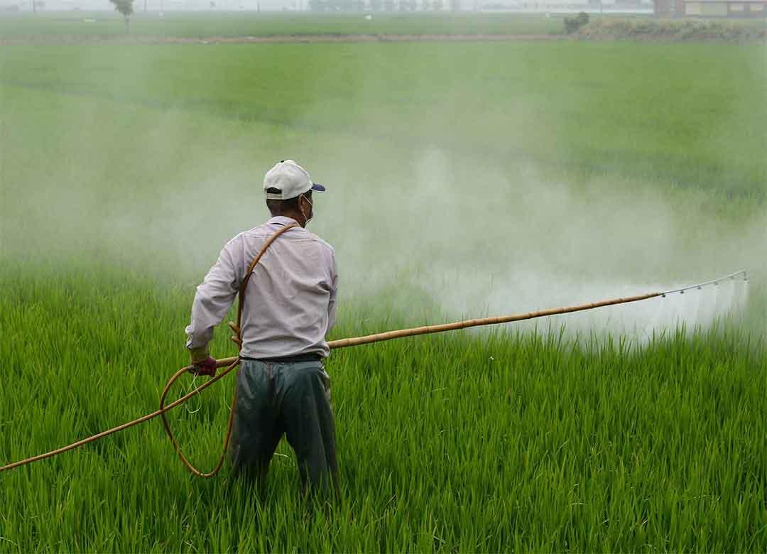 Insektisida dengan bahan aktif abamectin